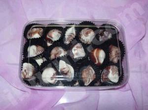 Coklat kerang